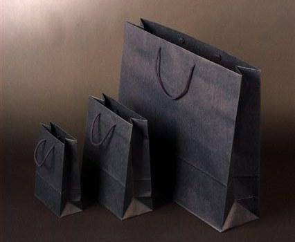Papírová taška o rozměru 250 x 110 x 310 mm,modrý tisk na sulfát.papíru, bavlněné držadlo