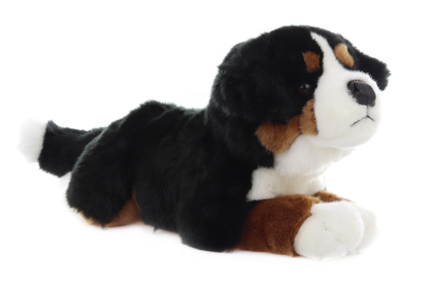 Plyš Bernský pes
