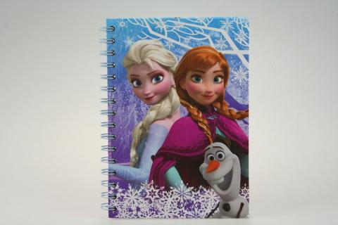 Zápisník Frozen