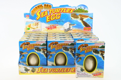 Tesání želví vejce 12/bal