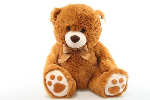 Plyš medvěd hnědý 58 cm