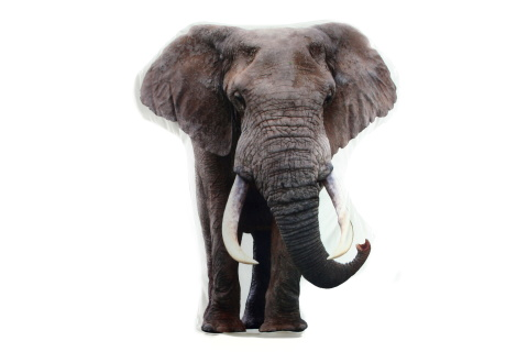 Polštářek 34 x 30 cm slon